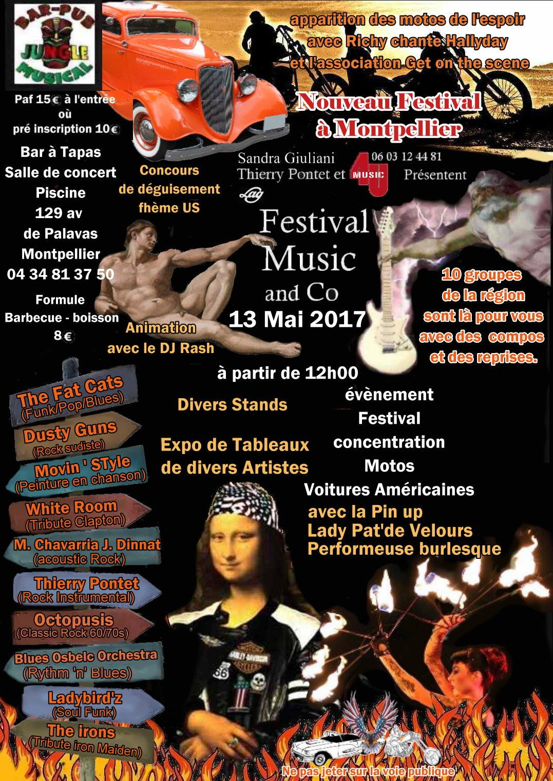 Festival_Music_And_Co_2017